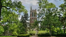 beneficial plant substances, Michigan State University, MSU, Beaumont Tower